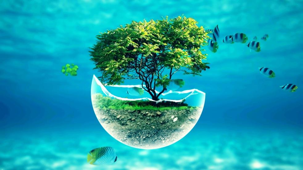 x-underwater-tree-widescreen-hd-abstract-desktop-wallpaper-36636032